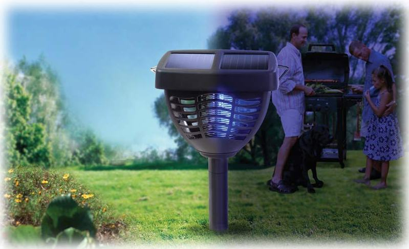 solar powered insect killer